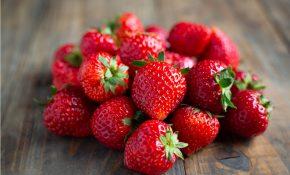 Poignée de fraises bien rouges et mûres
